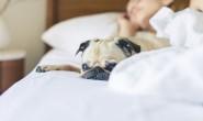 如何進入深層睡眠?